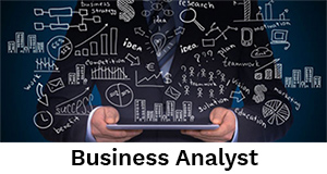 Business Analyst